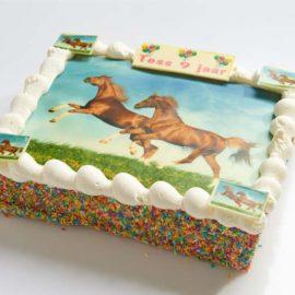 Paarden strip taart-0