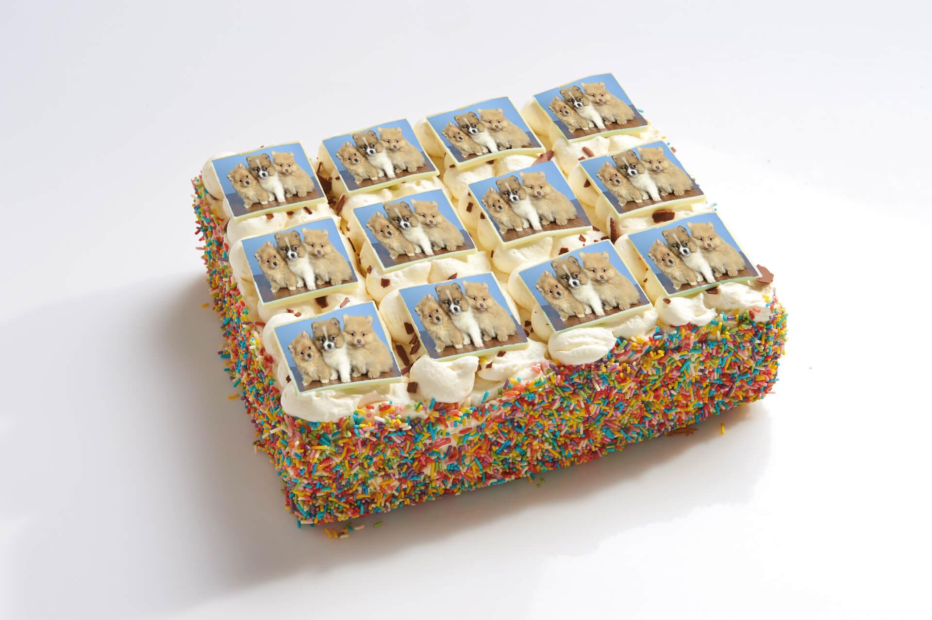 Honden stripjes taart